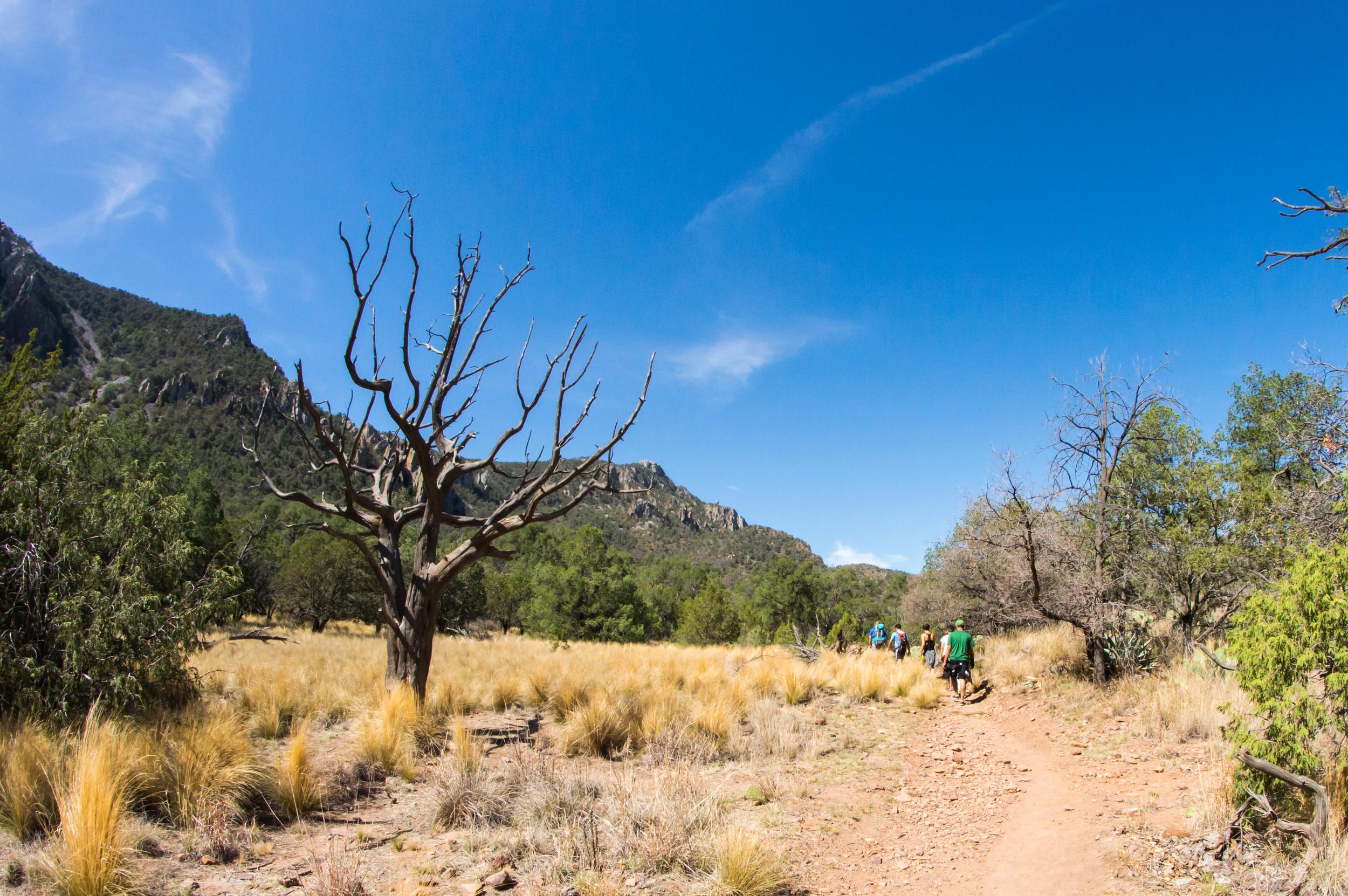 Hiking-10.jpg