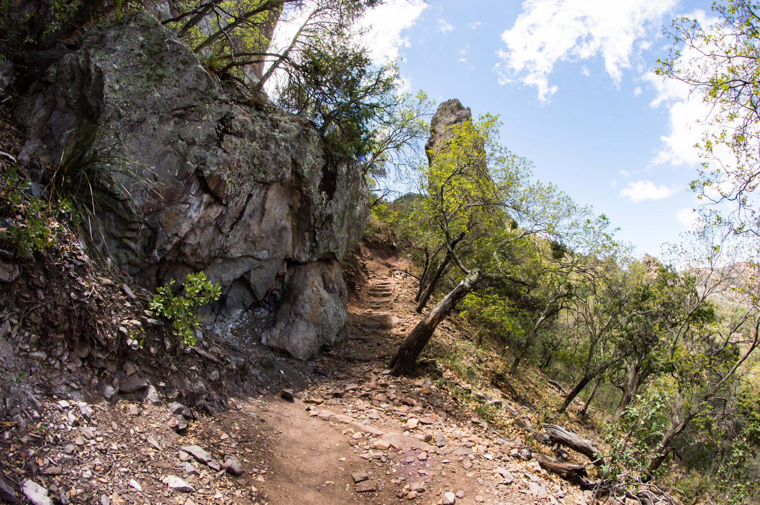 Hiking-16.jpg
