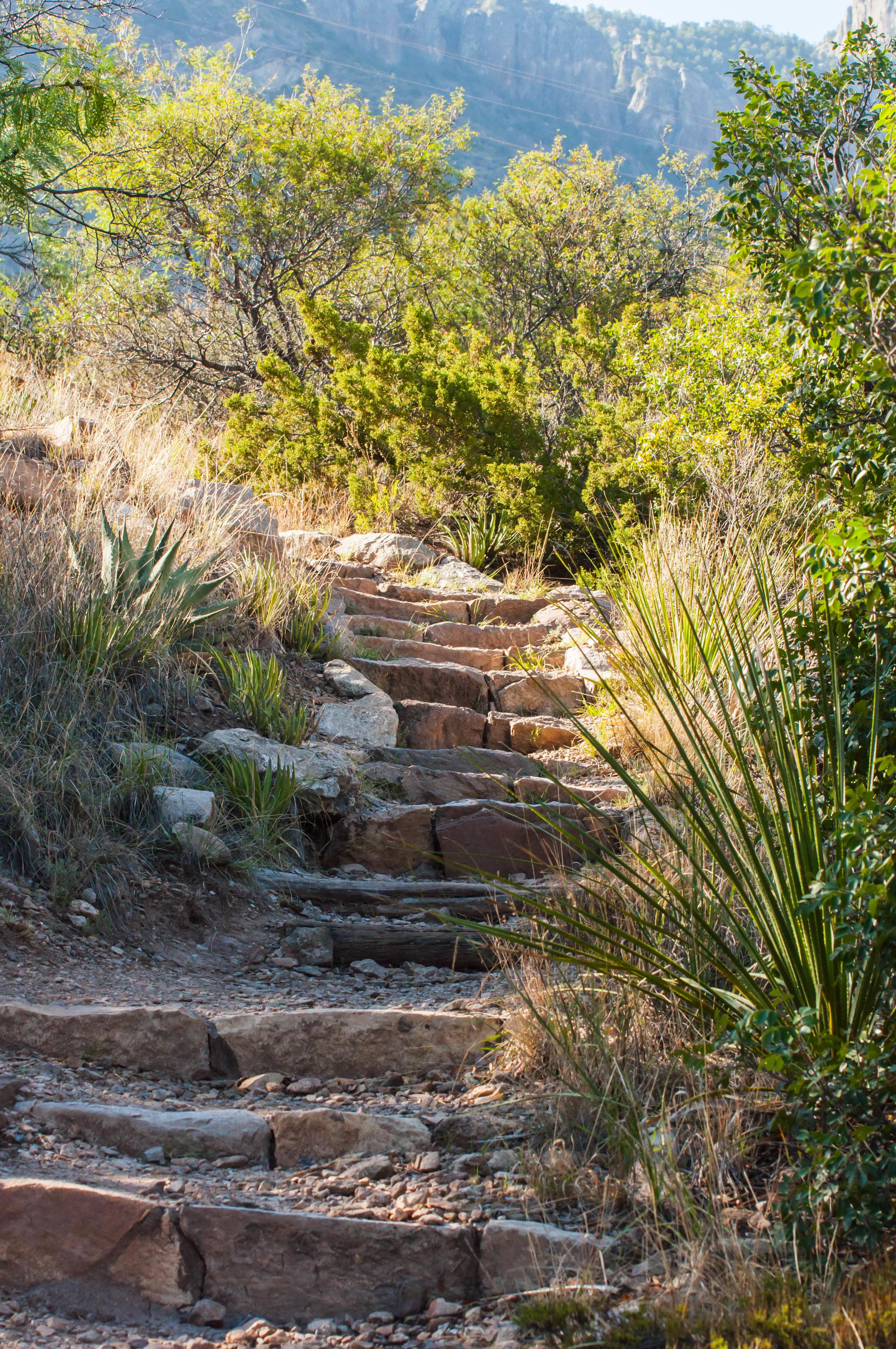 Hiking-27.jpg