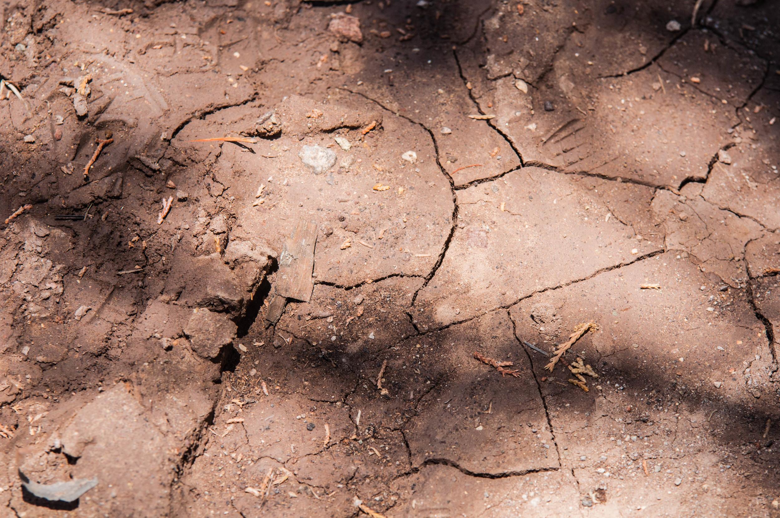 Hiking-42.jpg