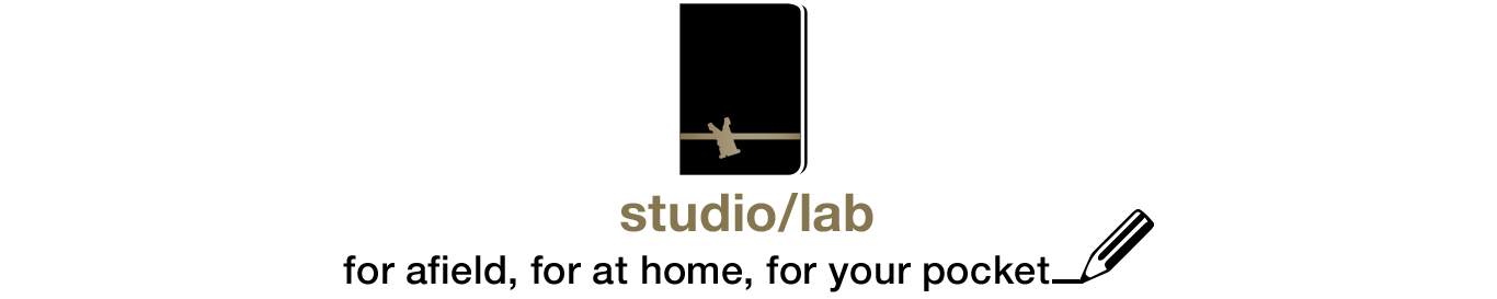 studio:lab3.png