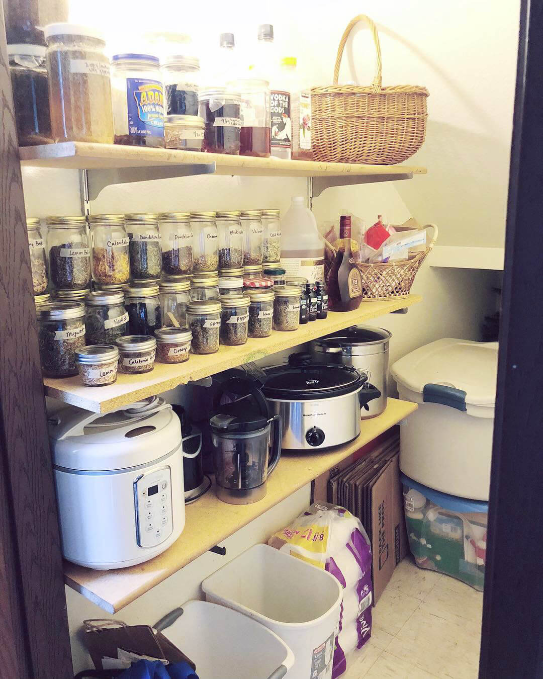 spruce-with-rachel-liz-pantry-after_.jpg