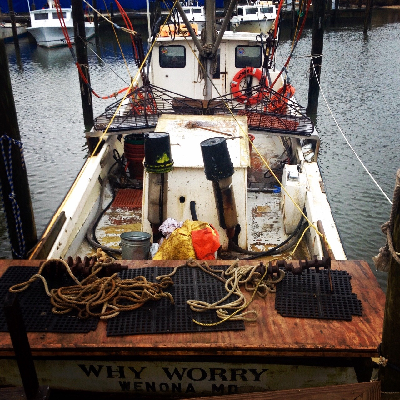 """The """"Why Worry"""" out of Wenona, Maryland is having a good oystering season this year. Other watermen out of Deal Island on Maryland's Eastern Shore have been meeting their limit, bringing in 100 bushels of oysters a day. It's good news for watermen and the working fleet of deadrises on Deal, where oysters still represent a substantial part of the Bay's winter economy."""