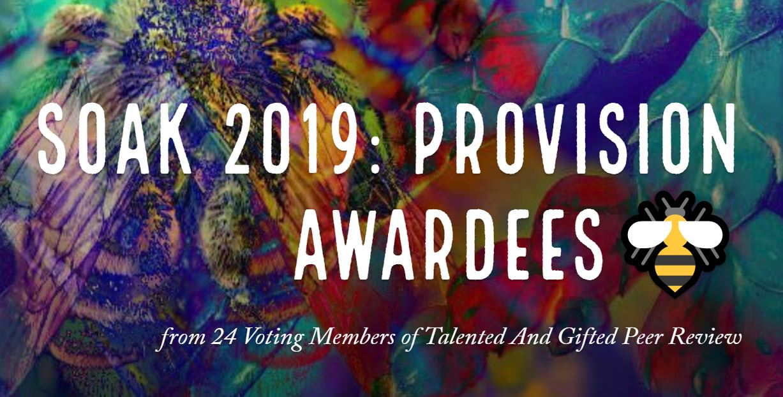 soak 2019 artist provision awardees.JPG