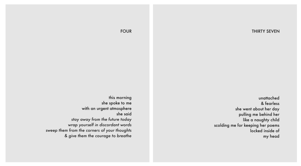 From  she&i: poems by karen gibson roc..