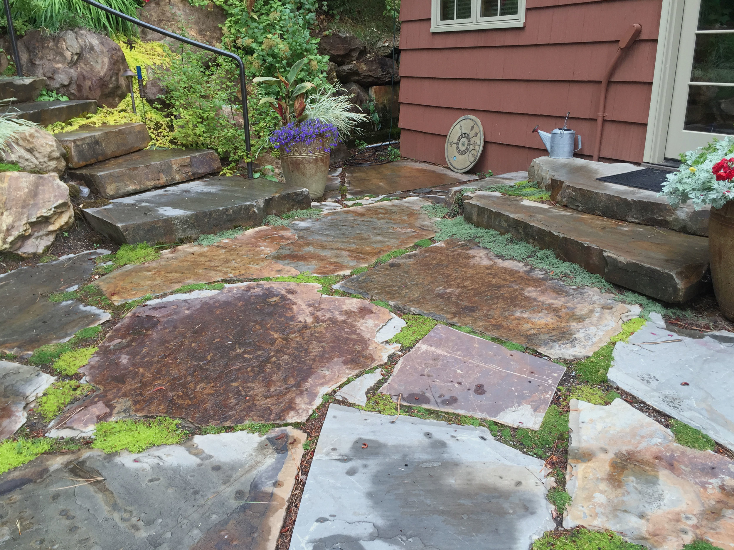 flagstone patio with thyme and moss