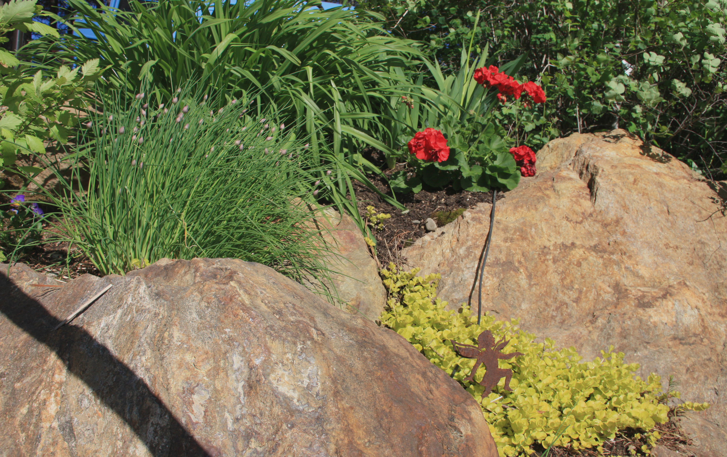creeping jenny in boulder retaining wall