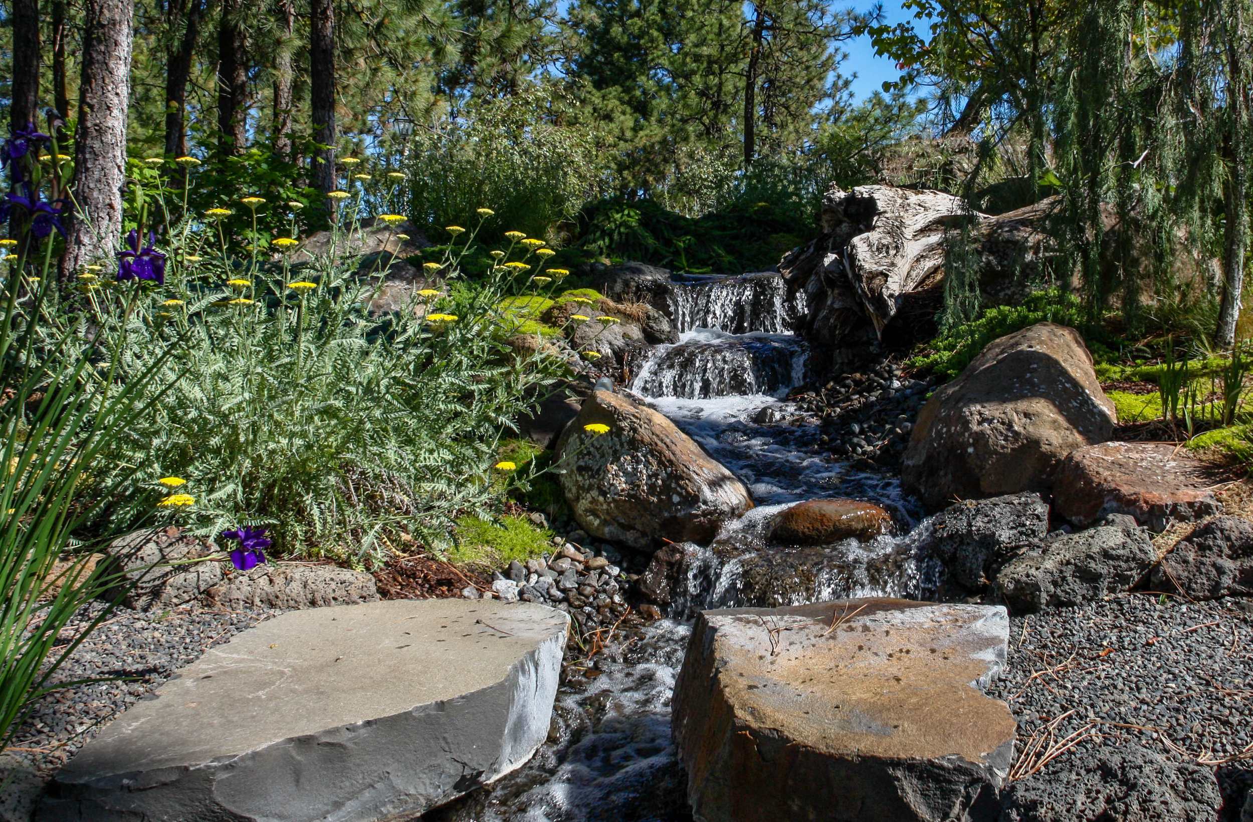 stepping stones across creek water feature