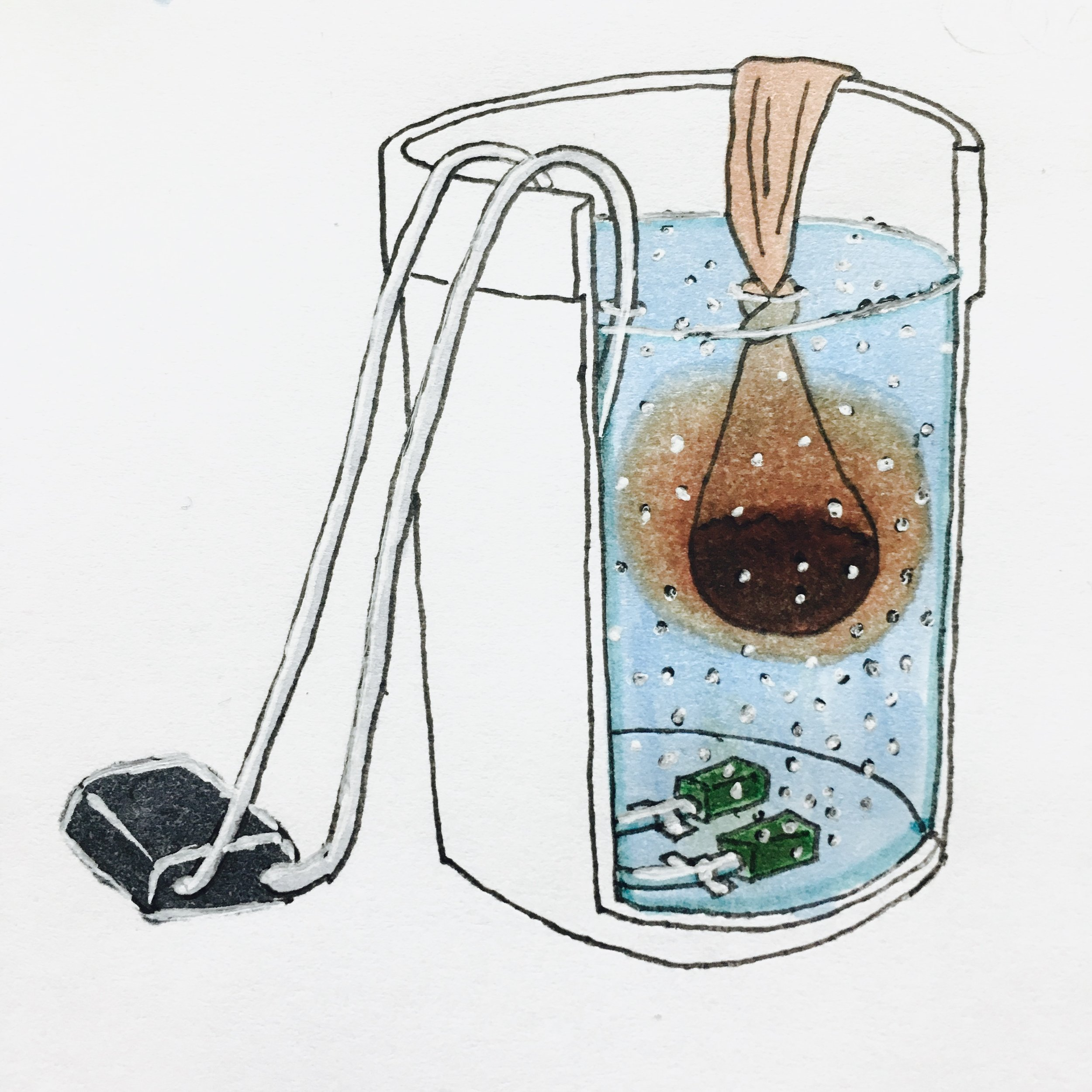 For a basic compost tea setup, suspend a permeable bag of finished compost in a five-gallon bucket. Add some food for your microbes and use an aquarium pump and airstones to aerate the water for 24-48 hours.