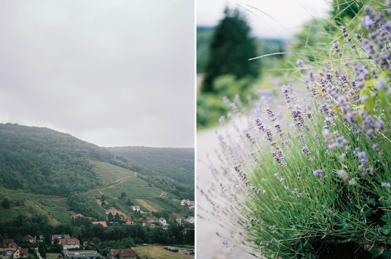 Alsacefilm_0007.jpg
