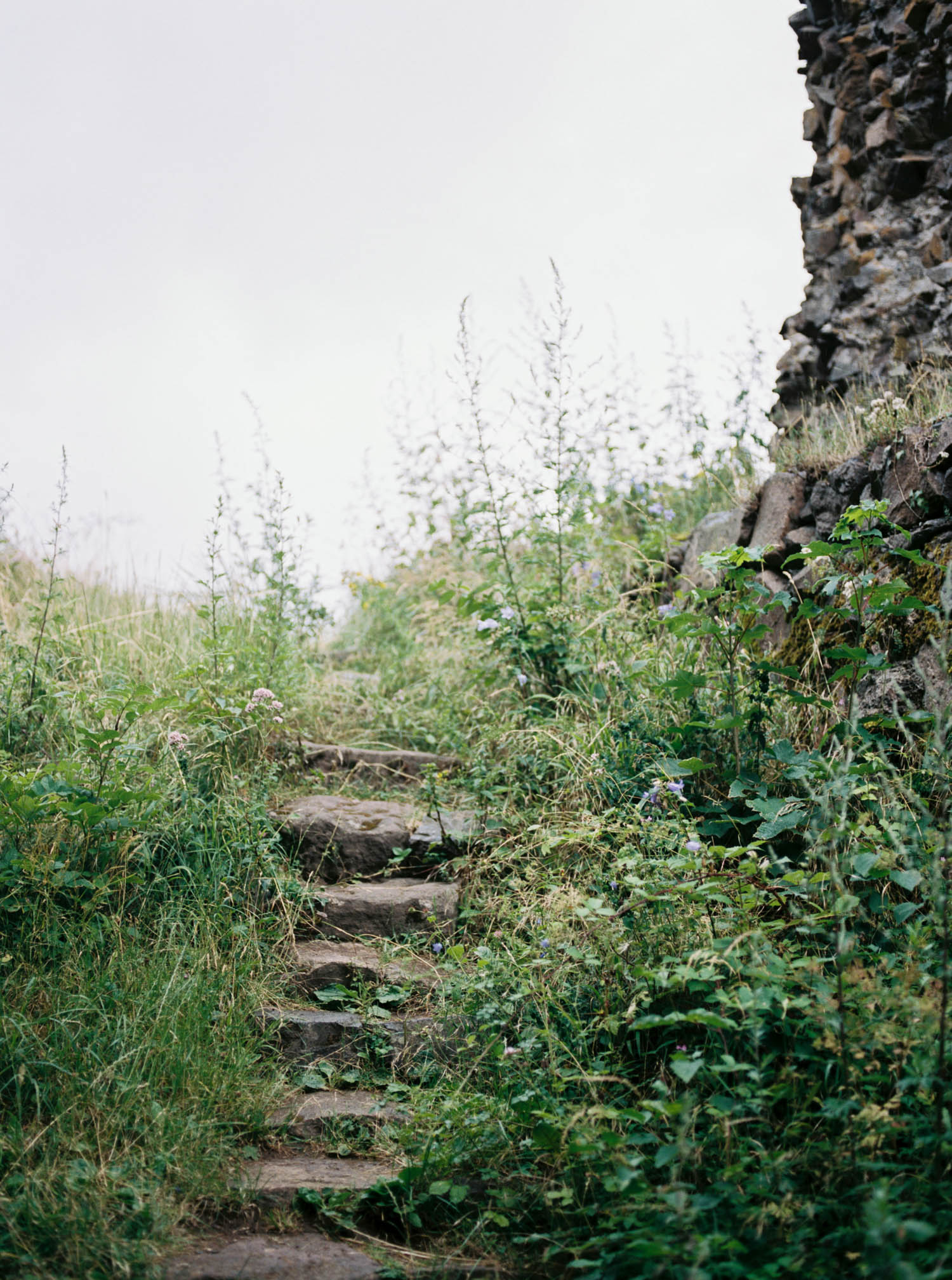 Alsacefilm_0009.jpg