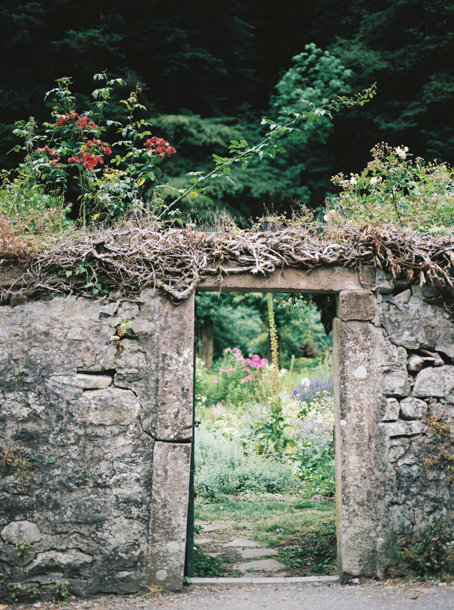 Alsacefilm_0015.jpg