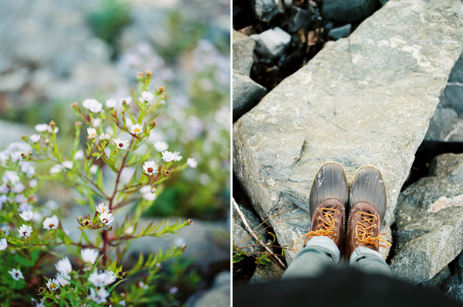 MaineBlog_0017.jpg
