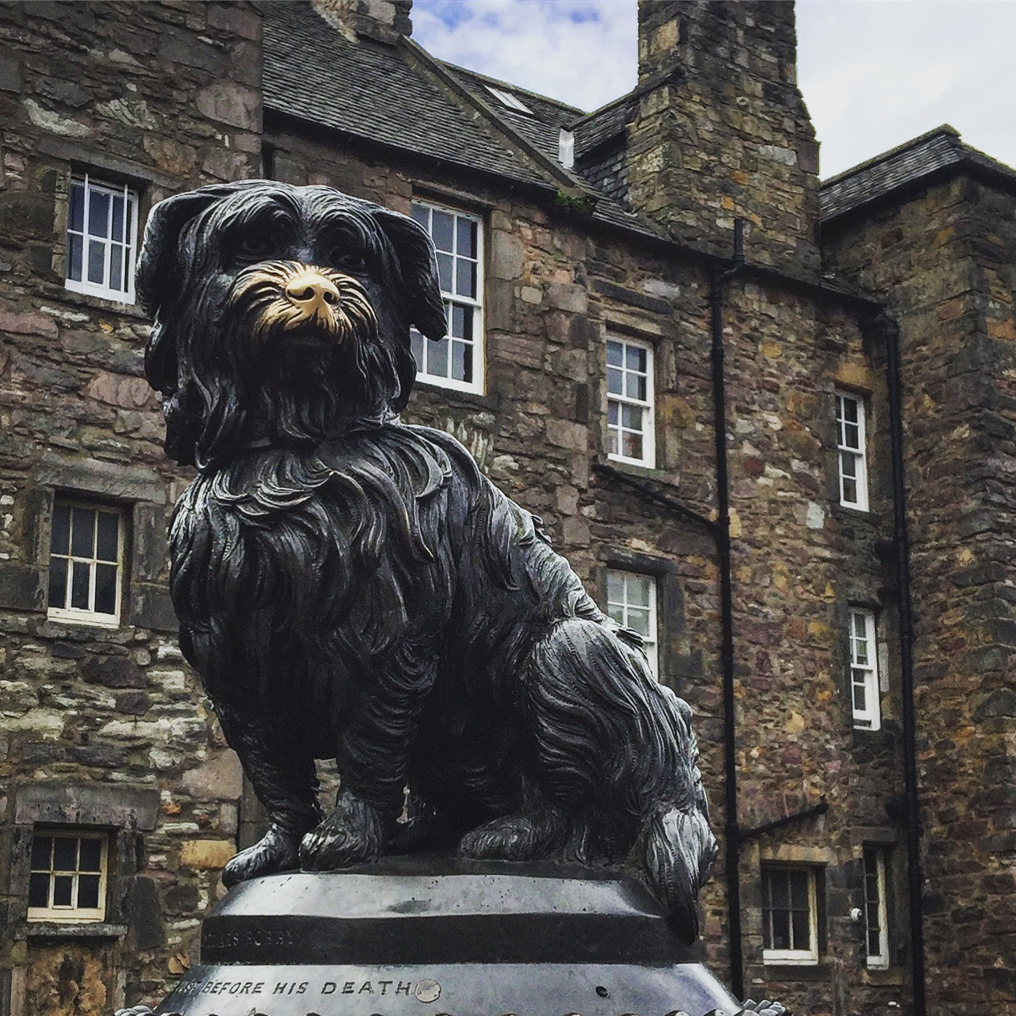 The most devoted companion, Greyfriar's Bobby