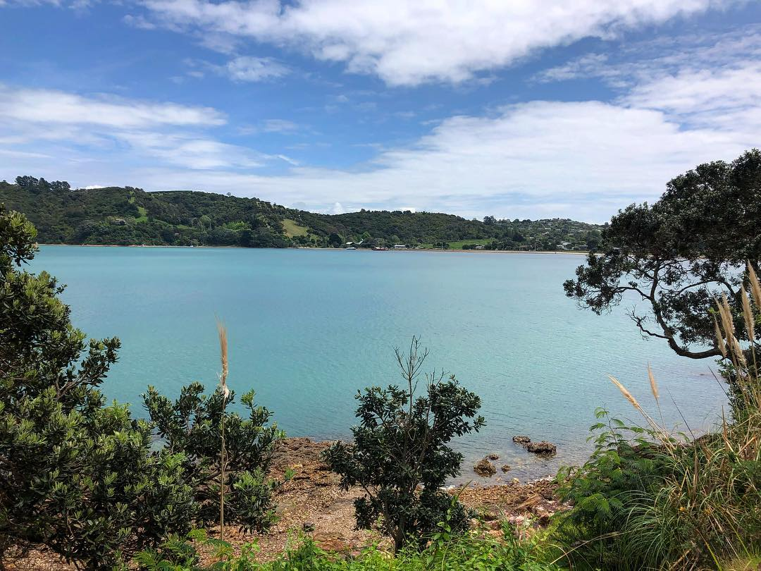 This gorgeous pic of Waiheke Island is courtesy of  Kerissa  (thank you so much!)