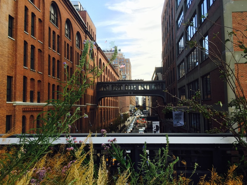 The ultimate solo travel guide to New York - up on The High Line