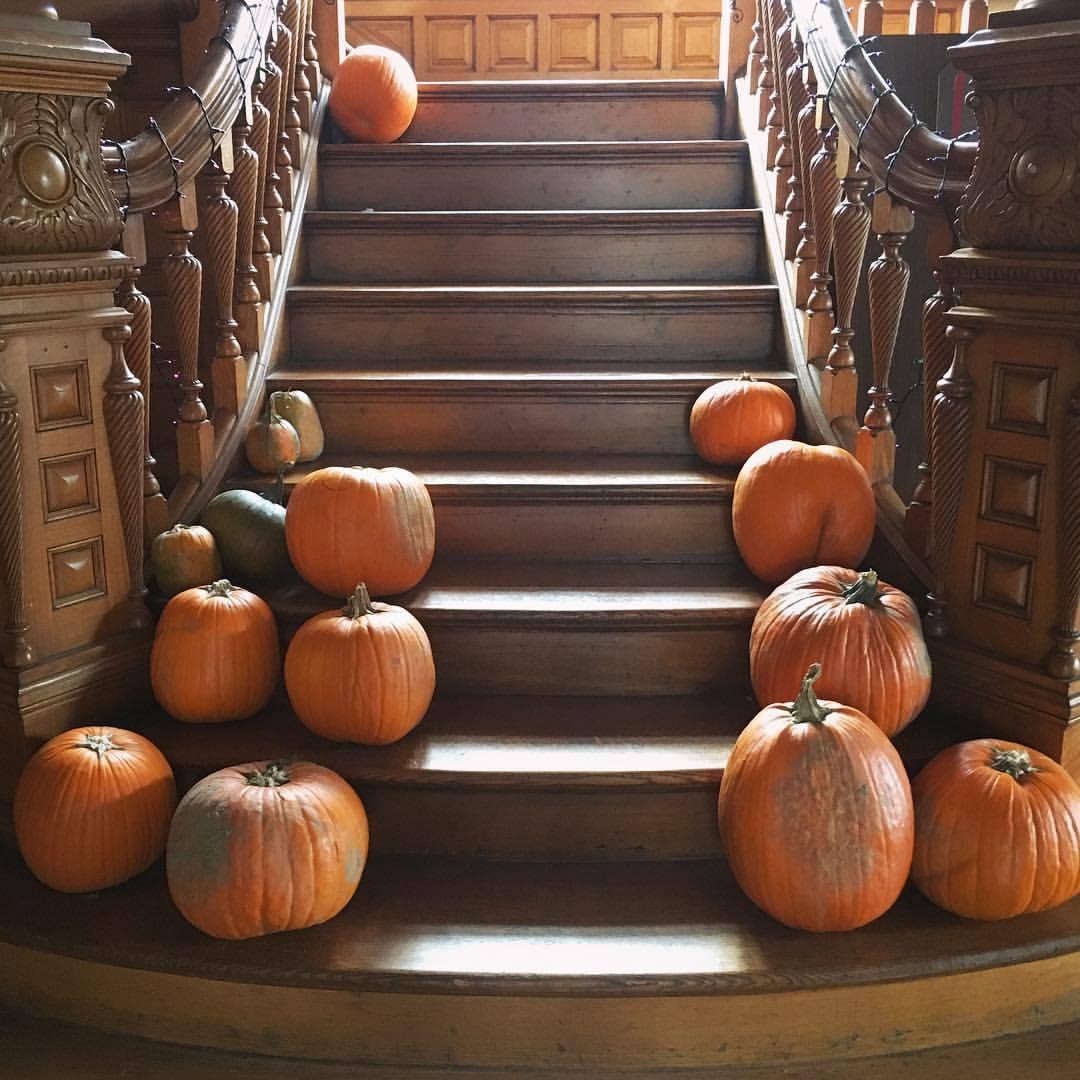 Halloween_Homeschool_Columbus.jpeg