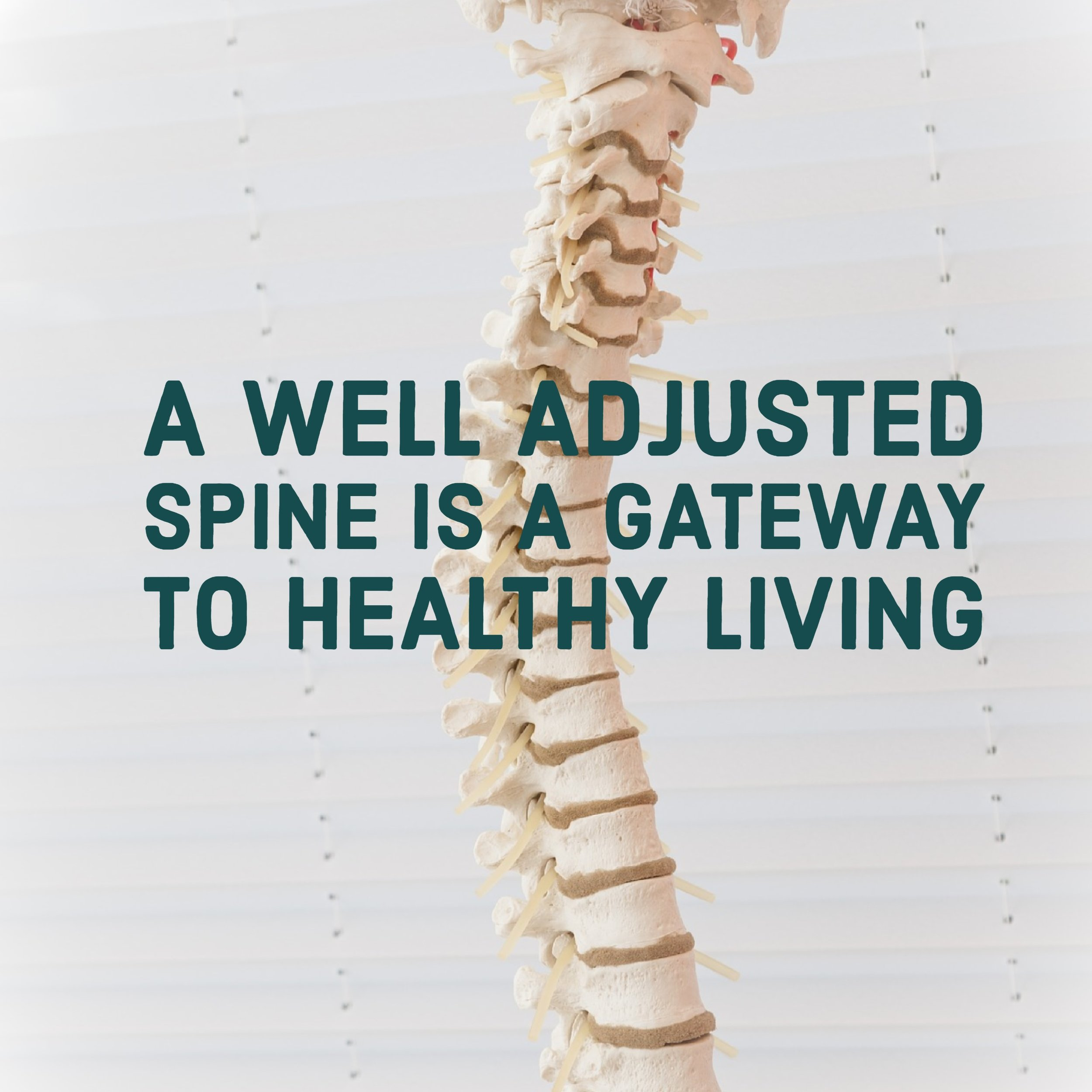 Spinal Adjustment Lubbock Tx