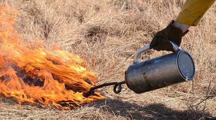 nachusa-fire-slide-9-720-400.jpg