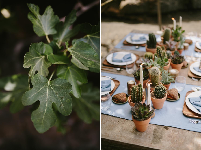 018-cactus-boda-decoracion.jpg