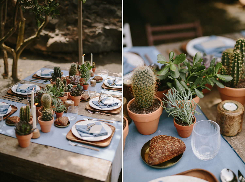 020-cactus-wedding.jpg