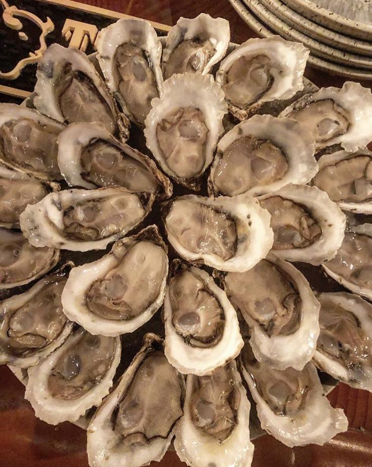 oyster.jpeg