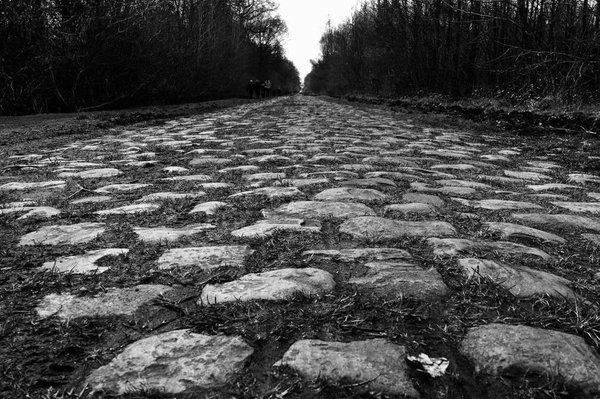 The cobbles of the Arenbourg Forrest, Paris-Roubaix