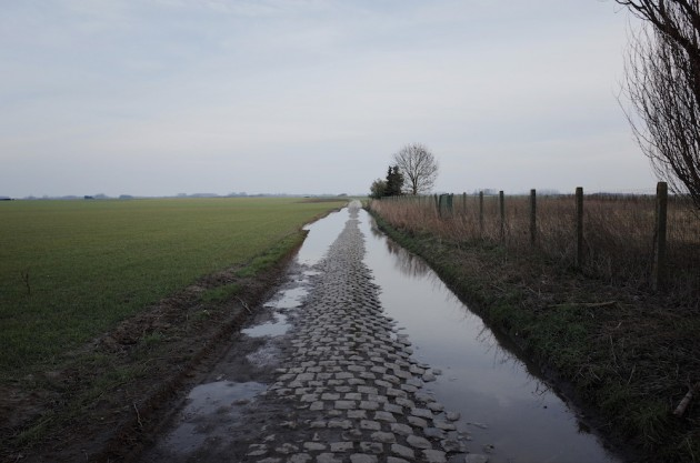 Carrefour de l'Arbre - a hidden pave roadway discovered by Alain Bernard, and now a part of the Roubaix route. I'm sure the riders thank you for that .
