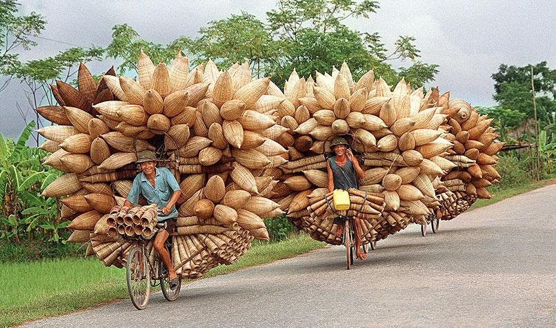 Vietnamese fishing nets ?