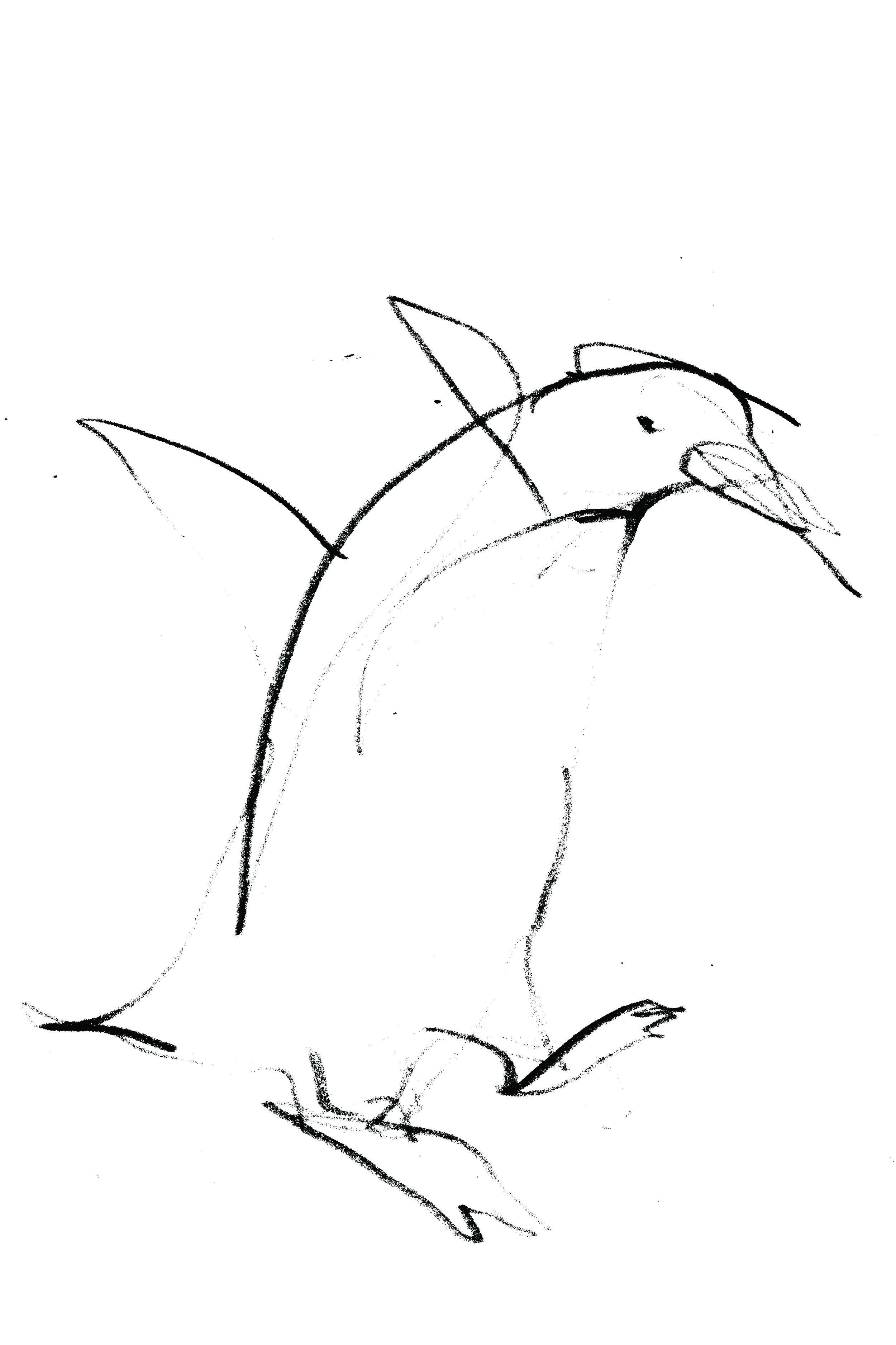 pingvin_02.jpg