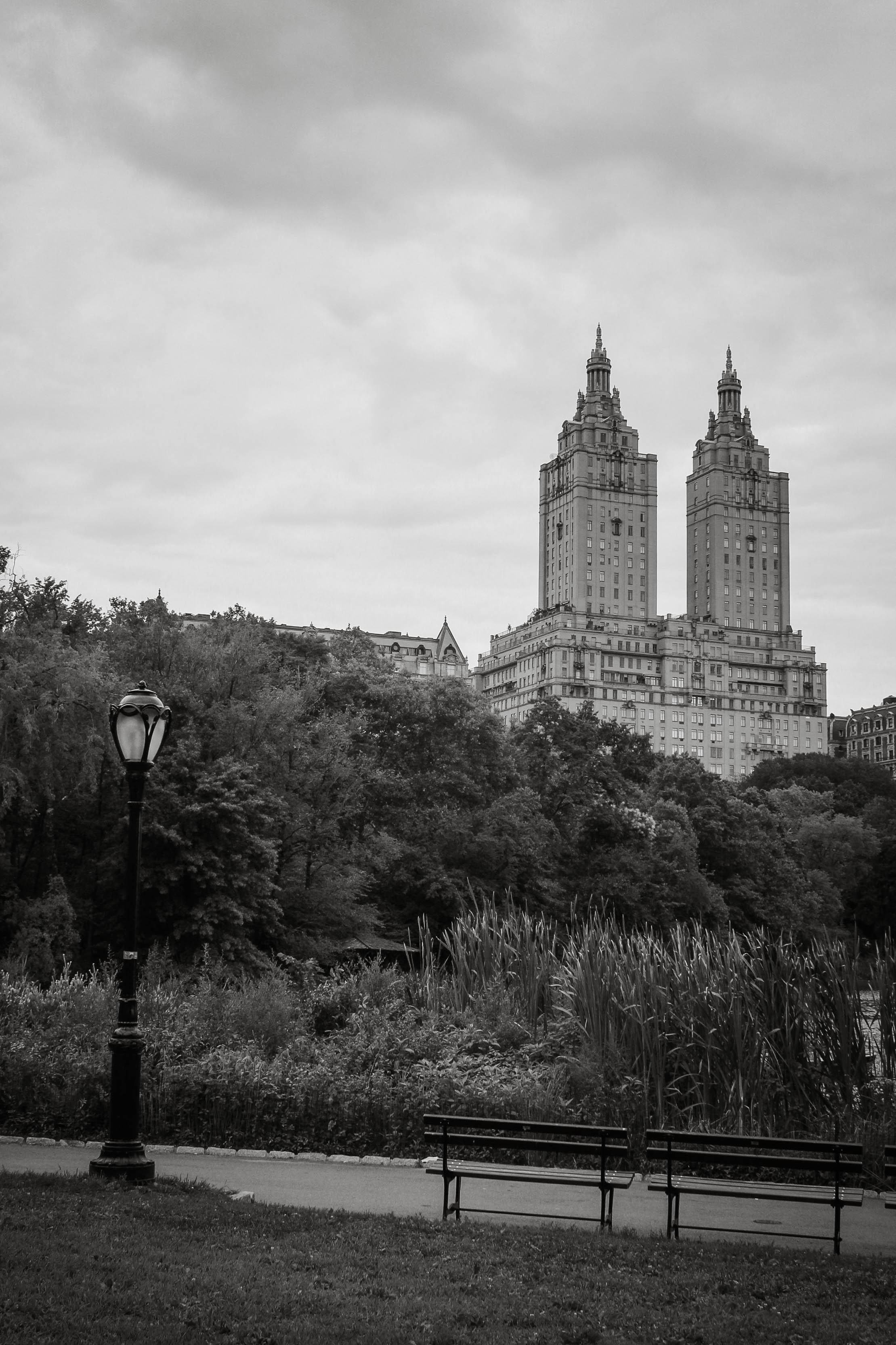 Kate-Alison-Photography-central-park.jpg