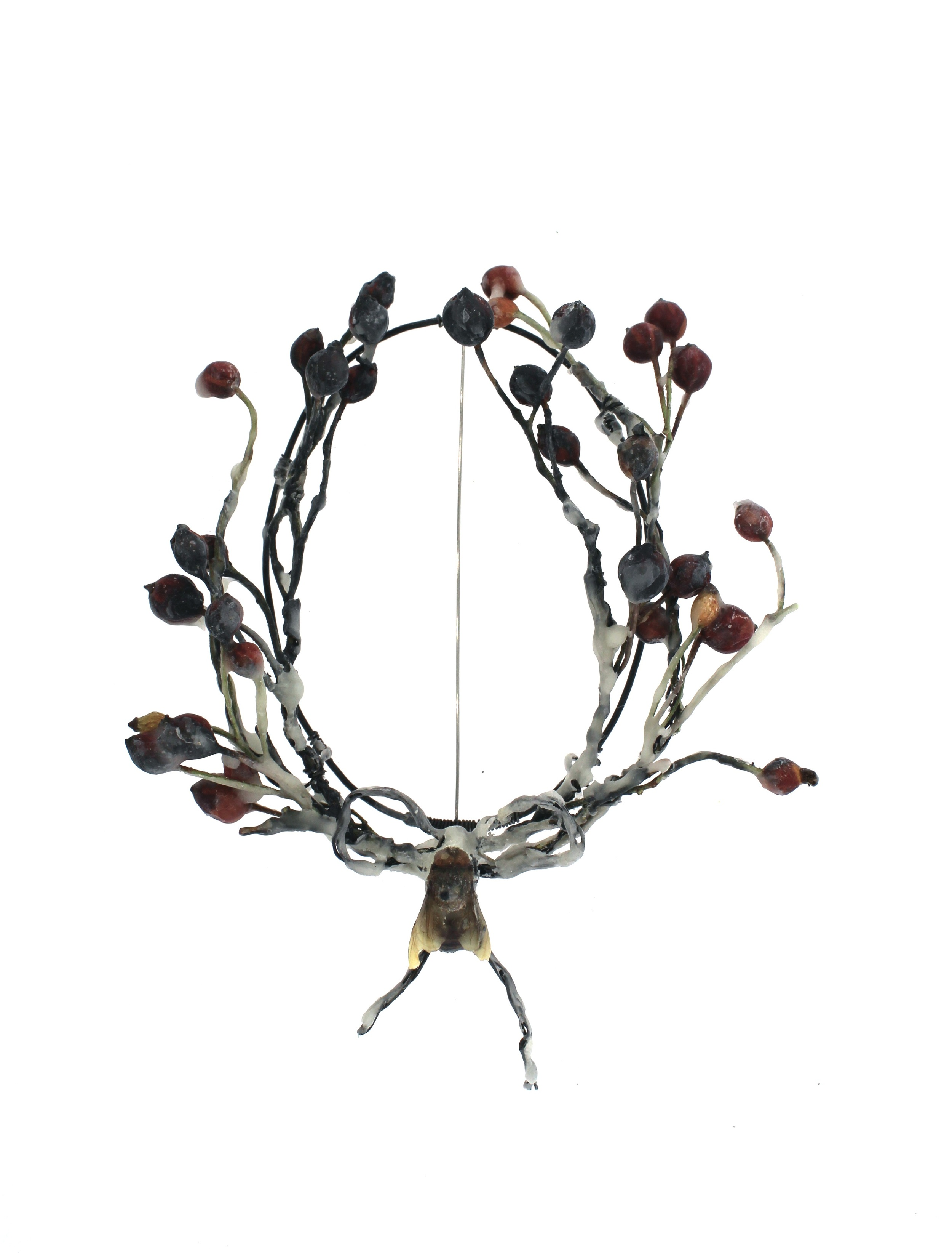 Bee Mourning III  rose hip, steel, beeswax, honey bee, insect pin