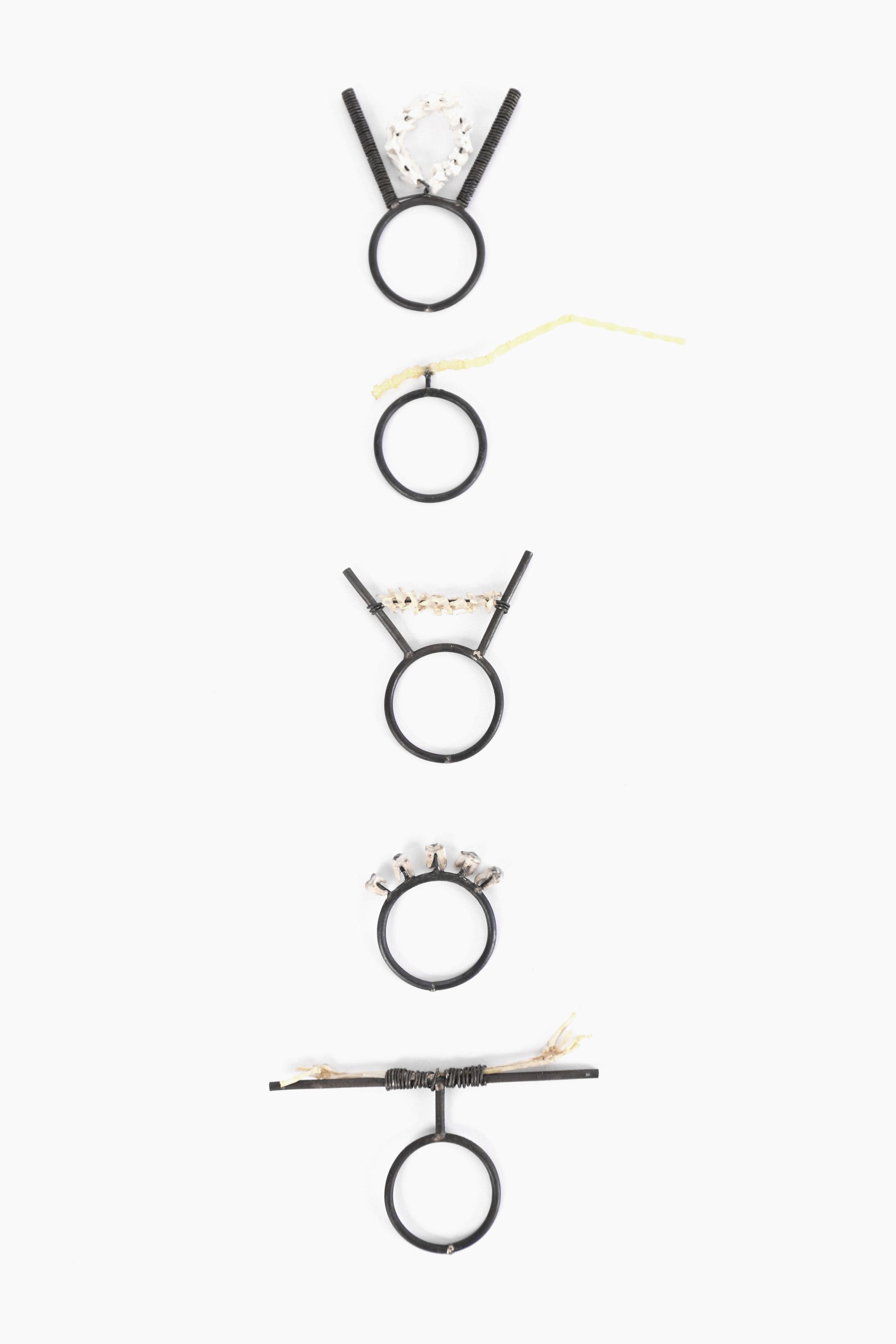 Luci Jockel Bone and Steel Series.JPG