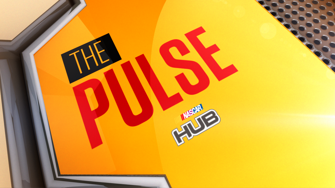 THE_PULSE.png