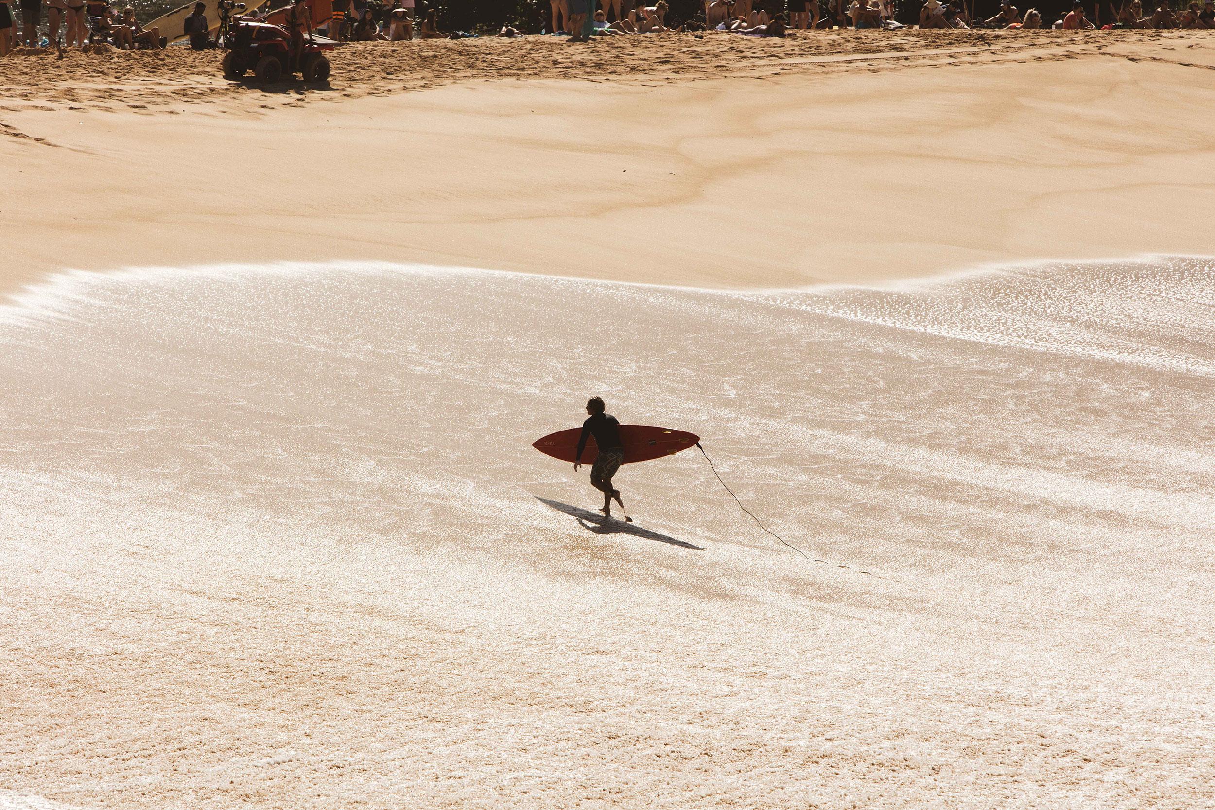 Surfer Waimea