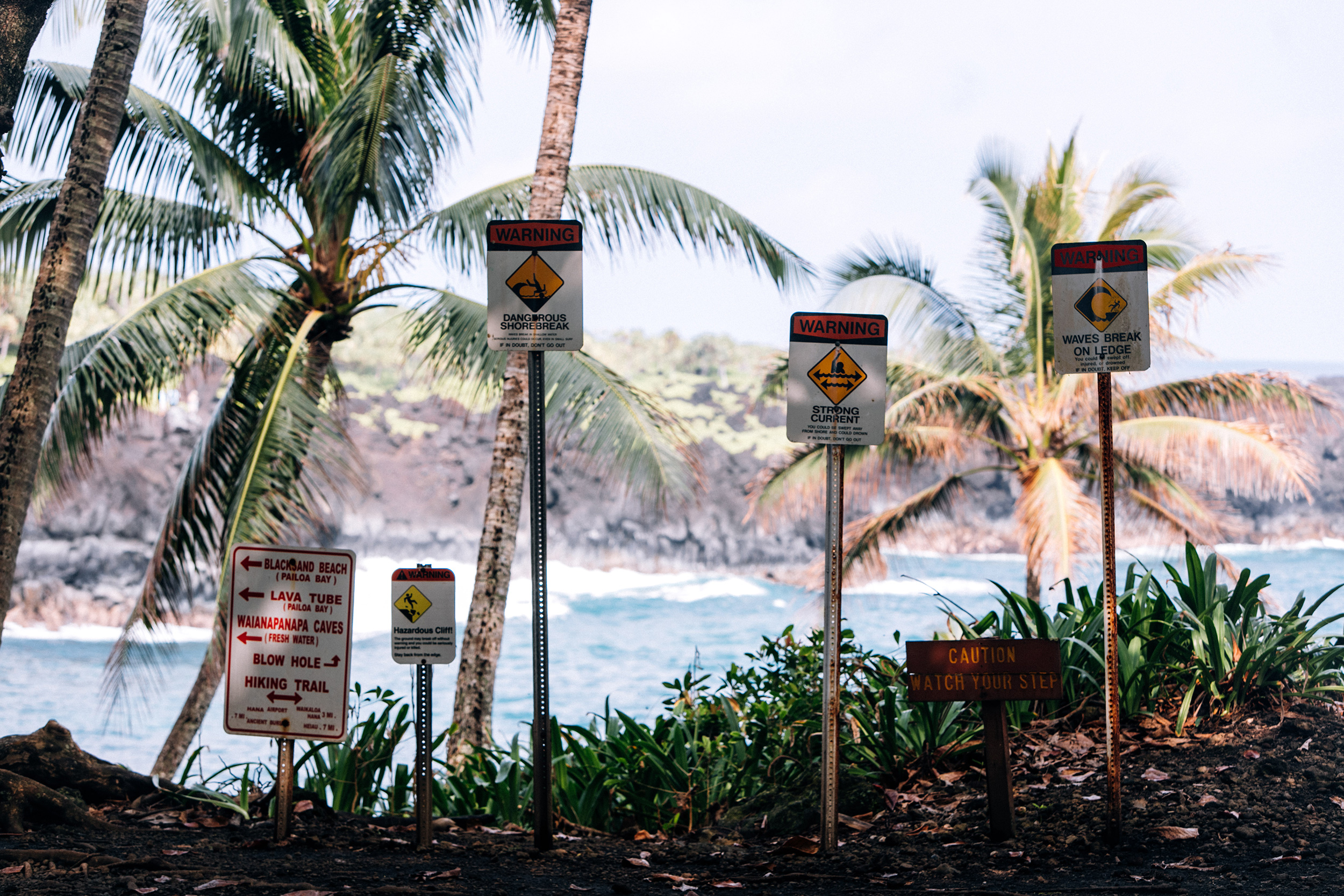 Maui water safety