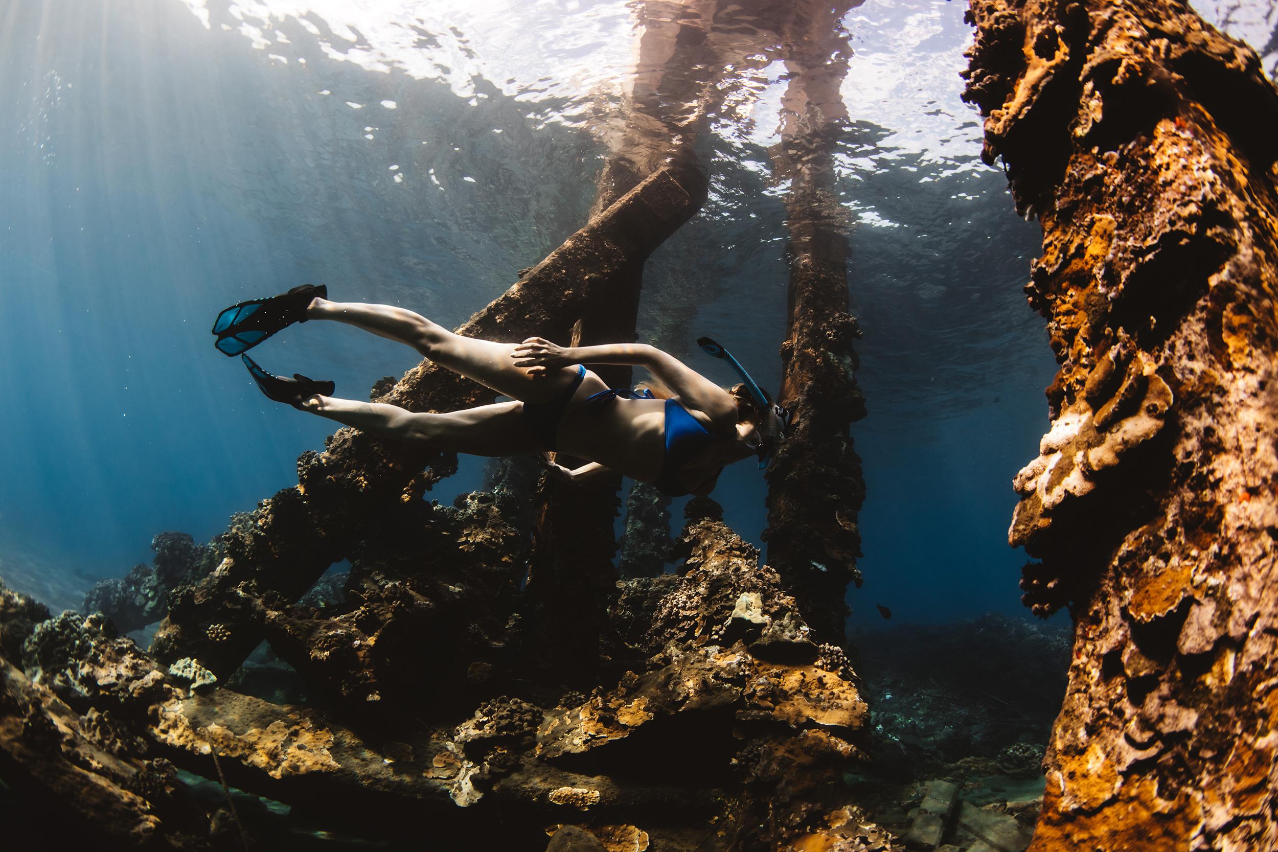 freedive maui
