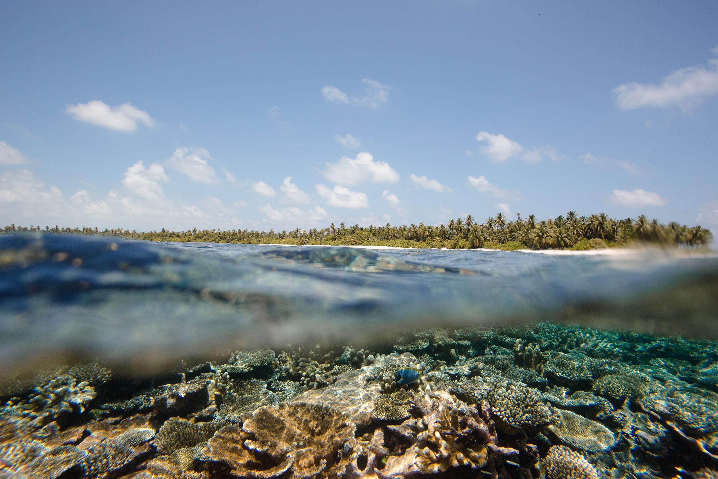 Maldives-438.jpg