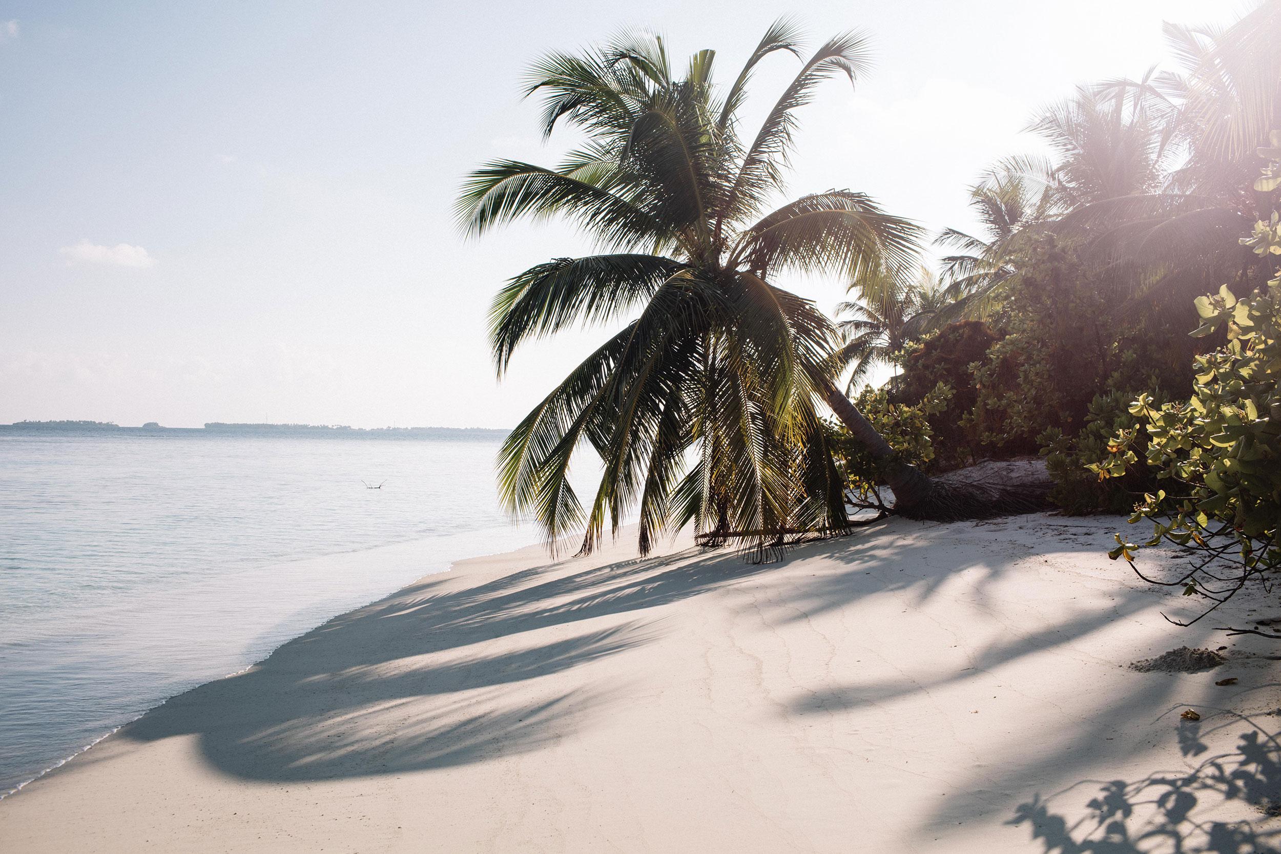 Maldives-933.jpg
