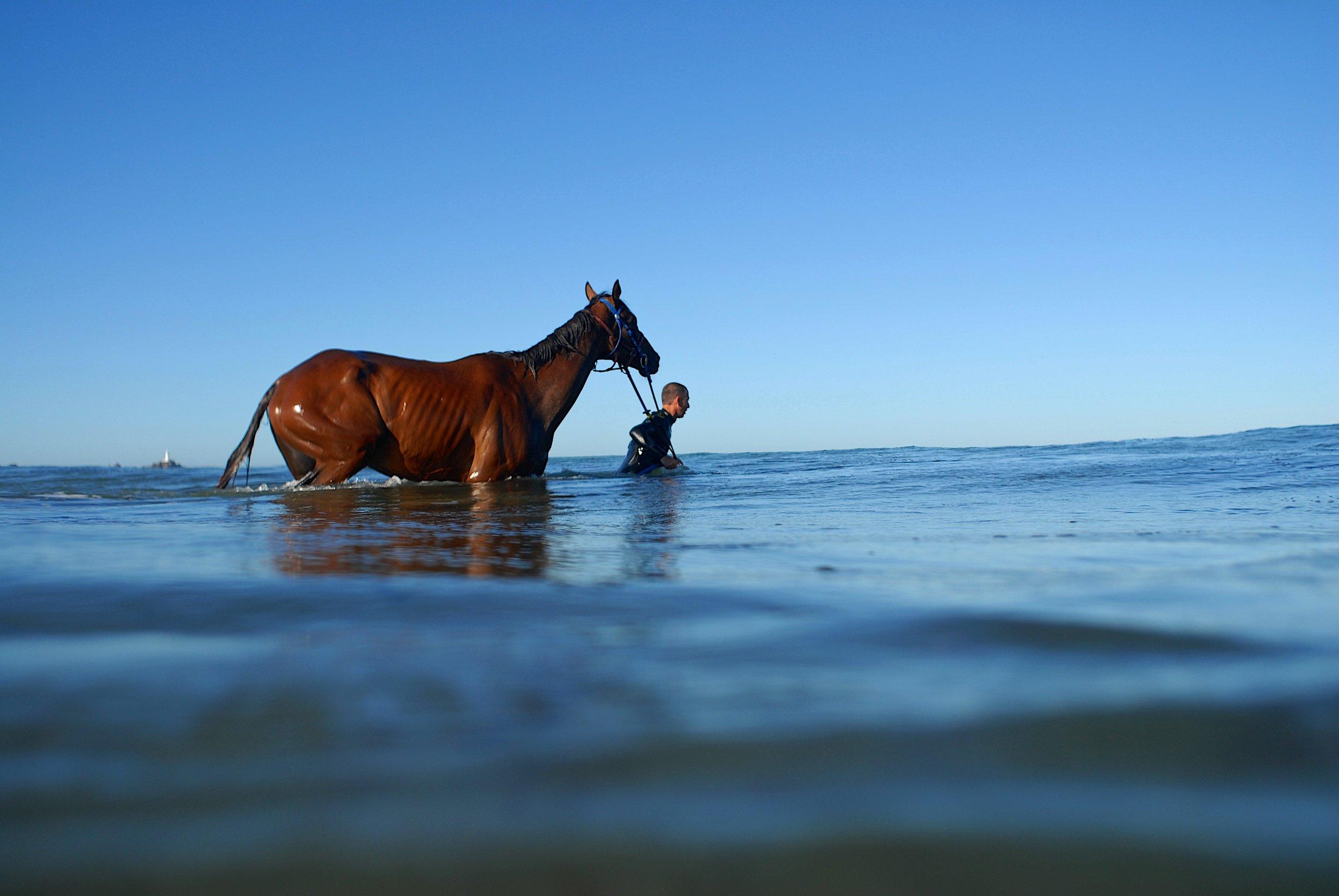 Karl Kurk Horse trainer.jpg