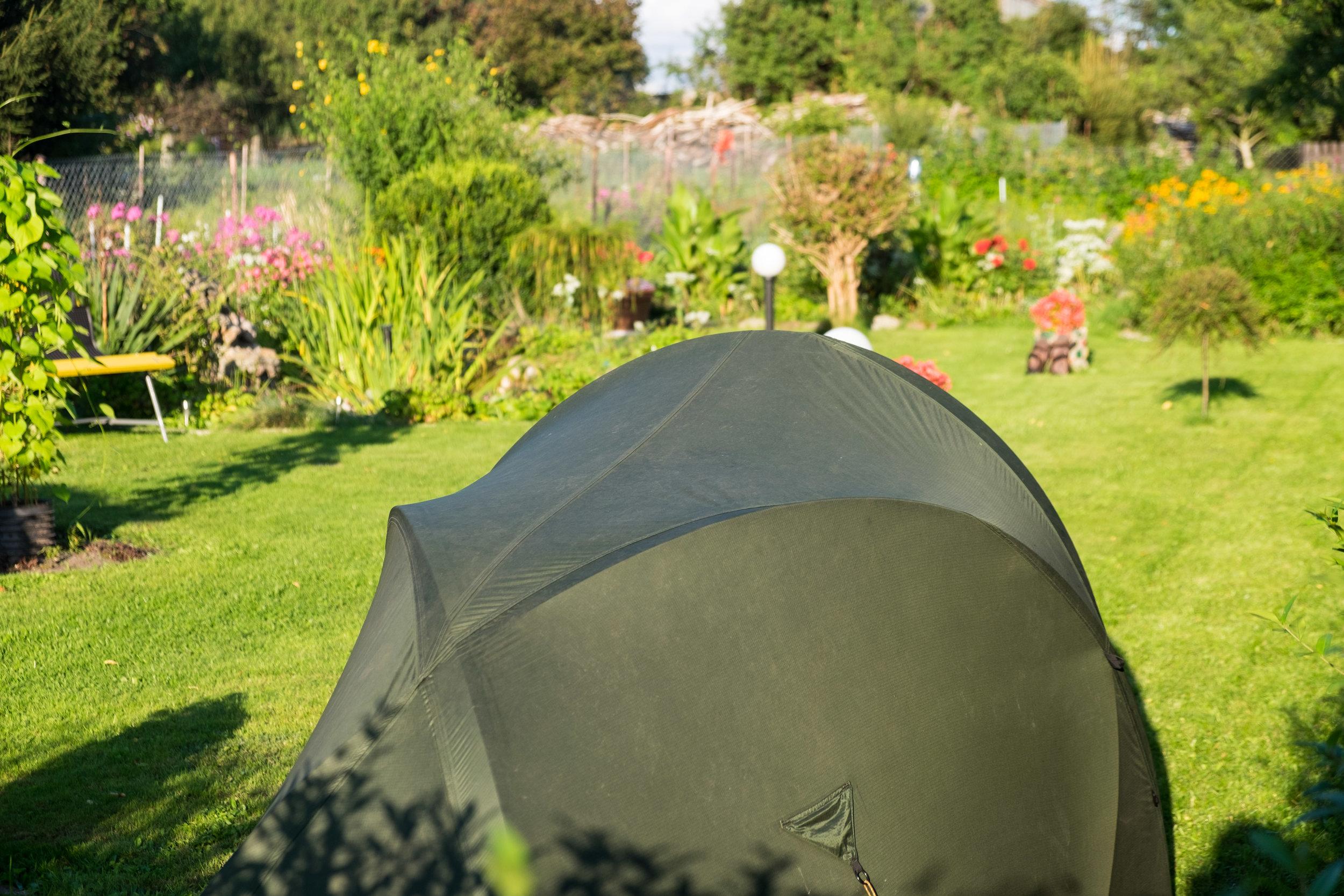 Eddy's garden.