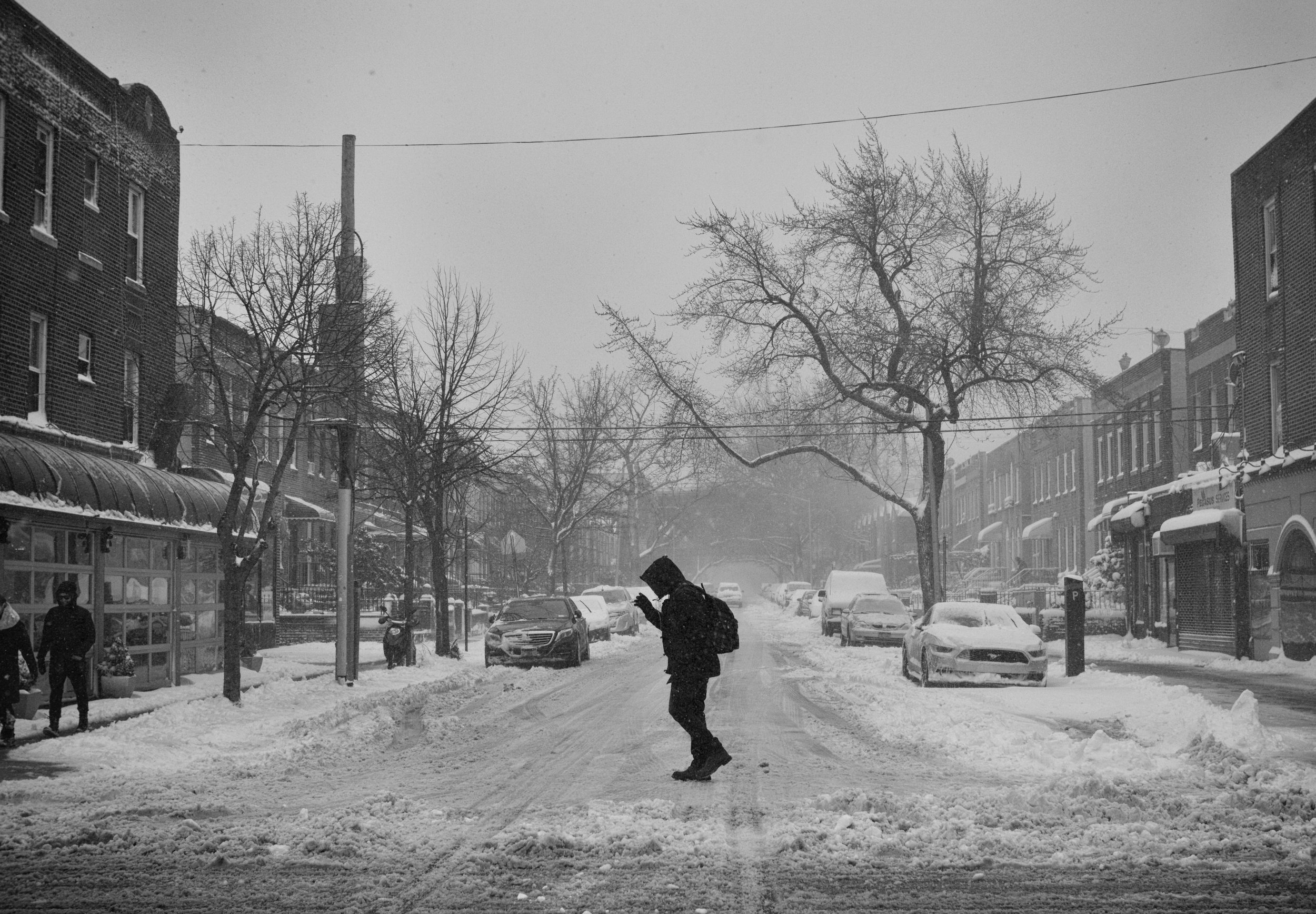 Street Crossing in the Snow