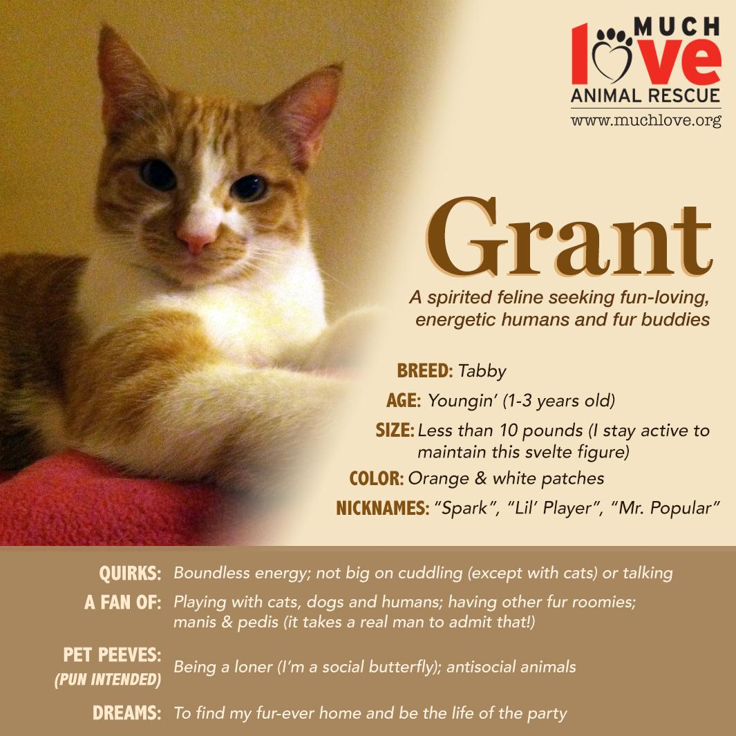 Grant_v01.jpg
