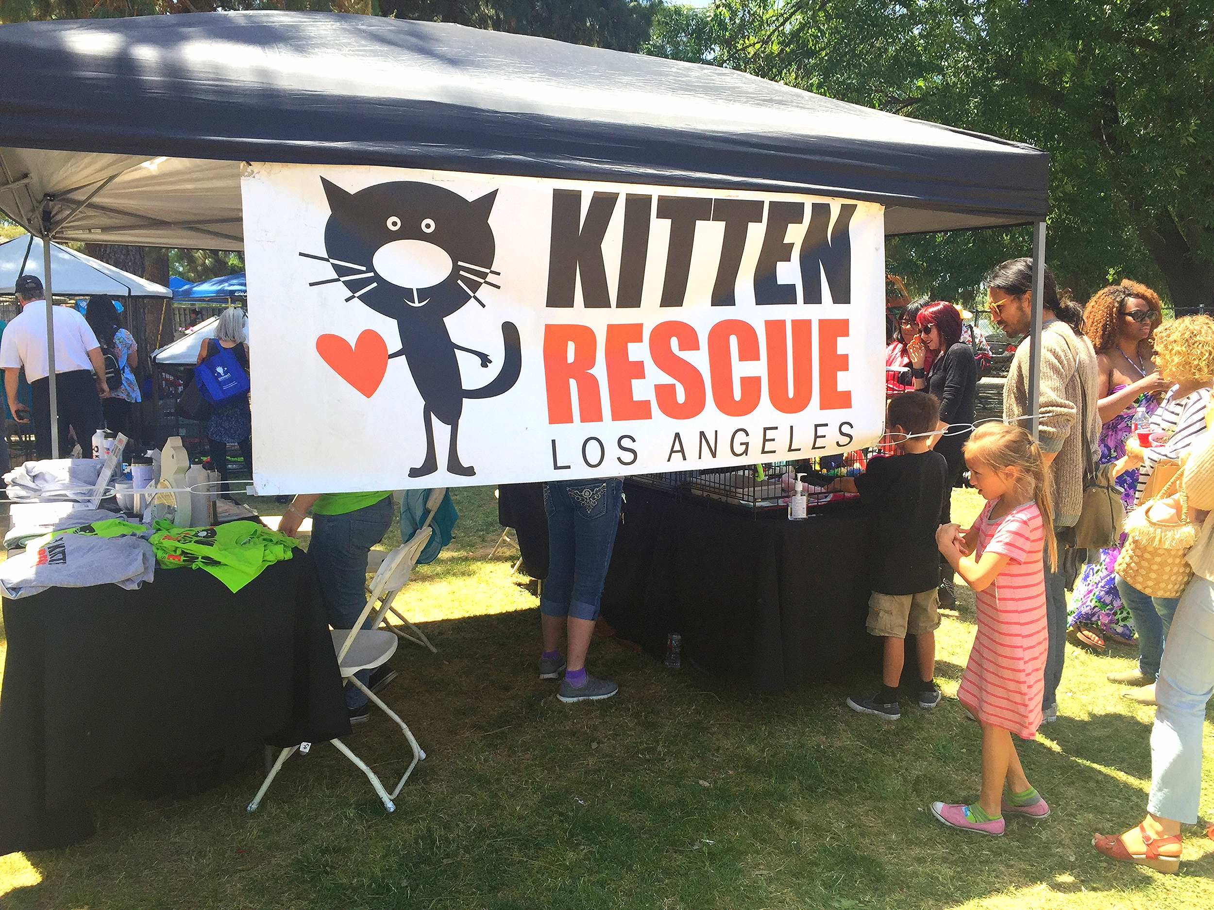 Kitten Rescue is a volunteer-run non-profit organization in Los Angeles