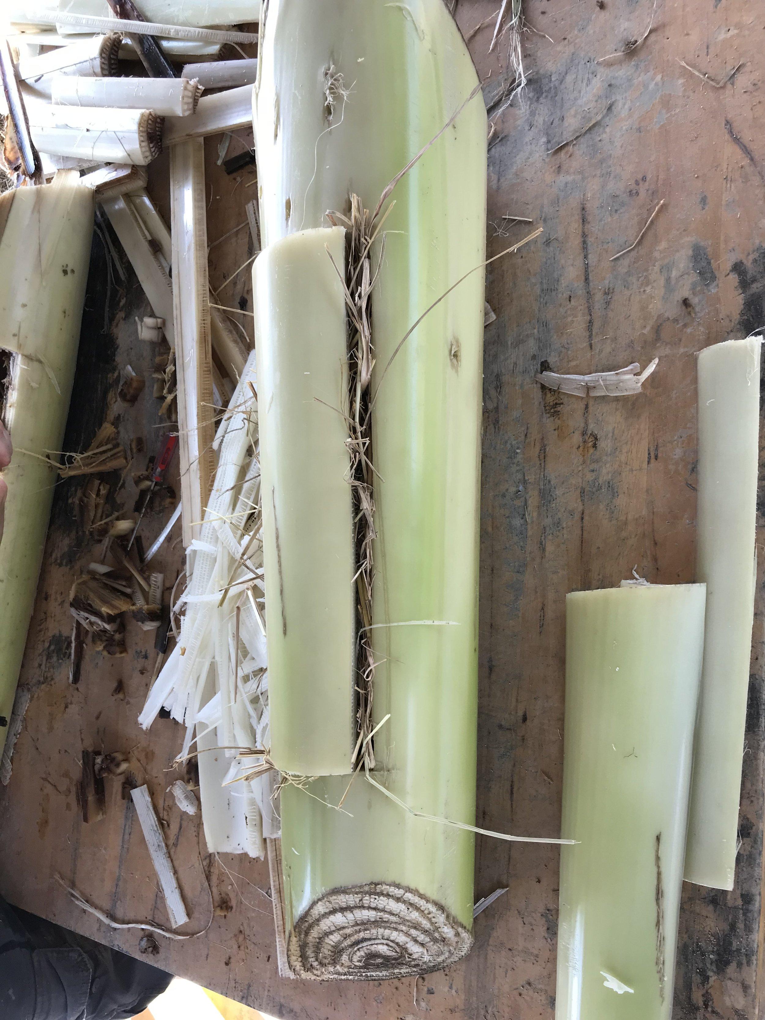 Fruit logs as elephant enrichments