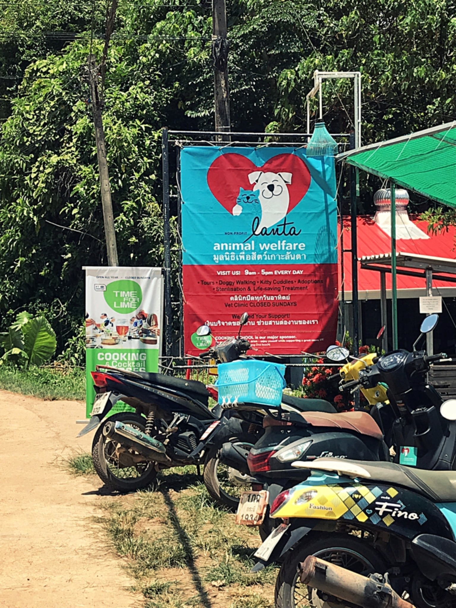 Lanta Animal Welfare, a nonprofit charity on Koh Lanta, Thailand