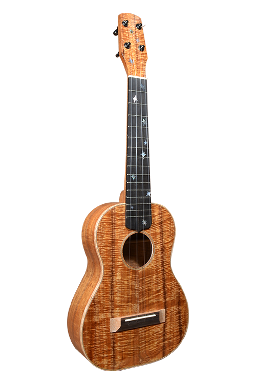 Koa Stars Tenor 01_Revised Outline Web.png