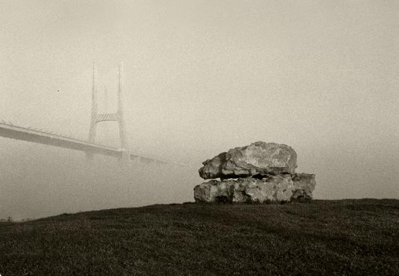 Luís Barreira  Ponte Vasco da Gama (calhaus), 1999  série:    no parque     fotografia  Gelatin-Silver Print