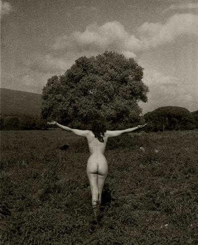 Luís Barreira  Nu #001, Arrábida, 1998  Fotografia  Gelatin Silver print  Série: De rerum natura