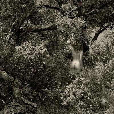 Luís Barreira  Nu #003, Arrábida, 1998  Fotografia  Gelatin Silver print  Série: De rerum natura